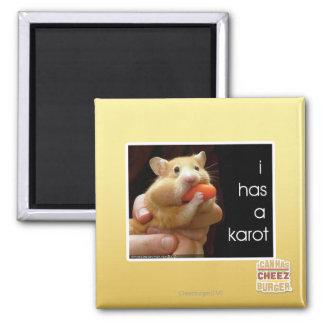 I has a karot magnet