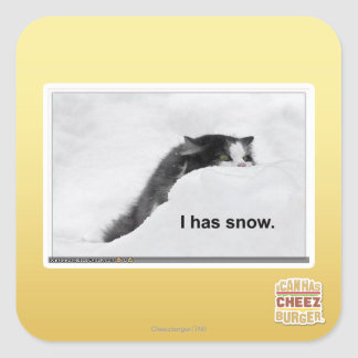 I has snow. square sticker