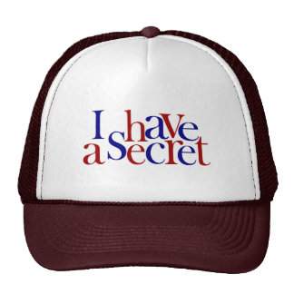 I Have A Secret Mesh Hat