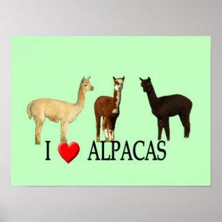 "I ""Heart"" Alpacas Posters"