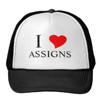 I Heart ASSIGNS Mesh Hat