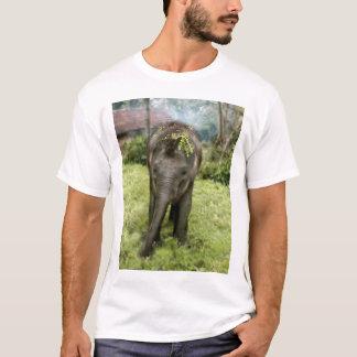 i heart elephants shirt