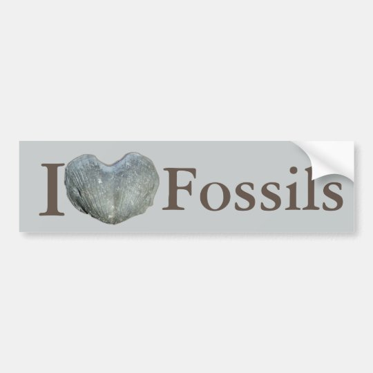 I Heart Fossils Bumper Sticker