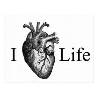 I Heart Life Postcard