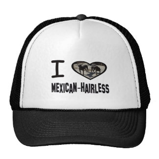 I heart Mexican-Hairless Hat