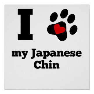 I Heart My Japanese Chin Poster