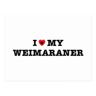 I Heart My Weimaraner Postcard
