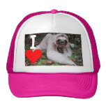 I heart sloths mesh hat