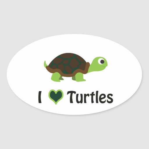 I heart Turtles Stickers