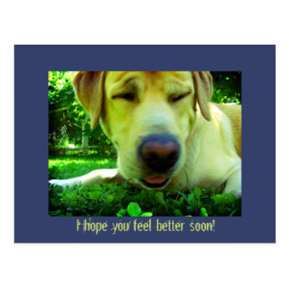 I hope you feel better soon! postcard