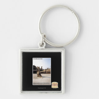 I iz shaolin paws of fury Silver-Colored square key ring