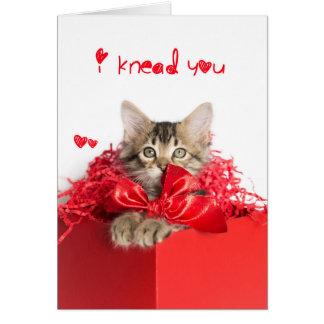 I knead You Kitten Card