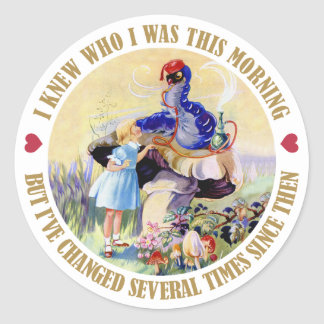 I KNEW WHO I WAS THIS MORNING, BUT I'VE CHANGED STICKER
