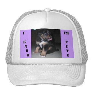 I  KNOW, I'm CUTE Mesh Hat