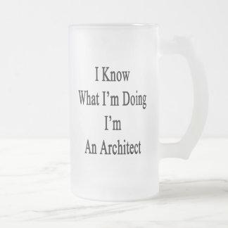 I Know What I m Doing I m An Architect Mugs
