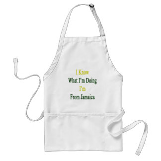 I Know What I m Doing I m From Jamaica Aprons