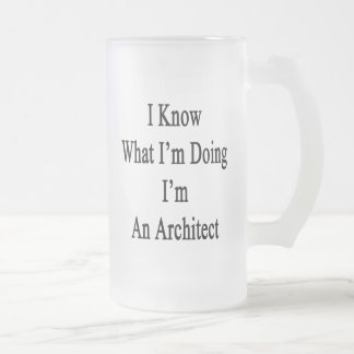I Know What I'm Doing I'm An Architect Frosted Glass Mug