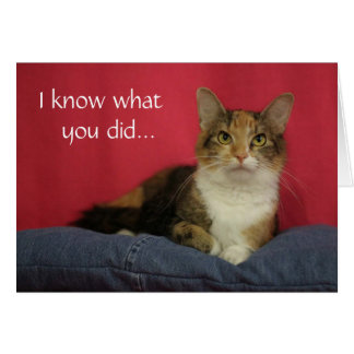 I know what you did Cat Thank You Card