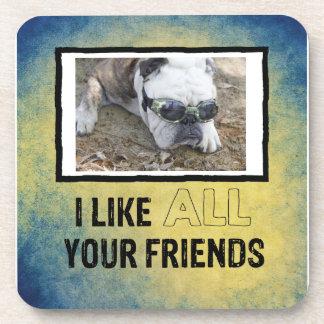I Like ALL Your Friends Custom Dog Photo Coaster