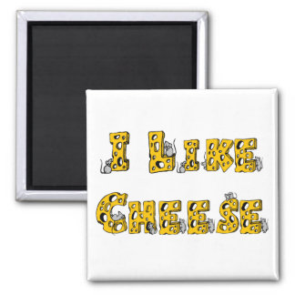 I like cheese magnet