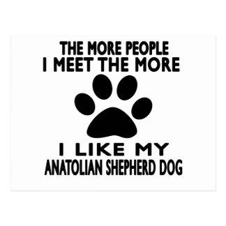 I like my Anatolian Shepherd dog. Postcard