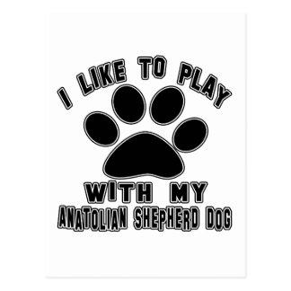 I like to play with my Anatolian Shepherd dog. Postcard