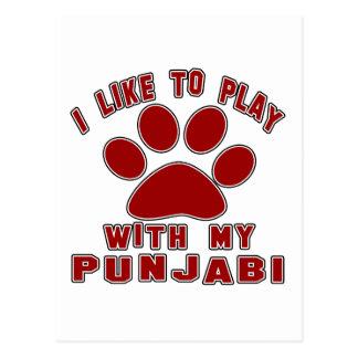I like to play with my Punjabi. Postcard
