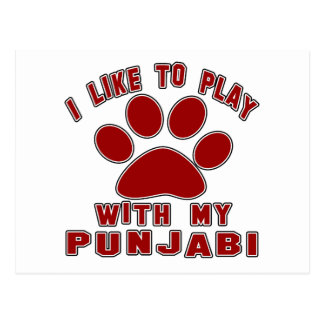 I like to play with my Punjabi. Post Cards