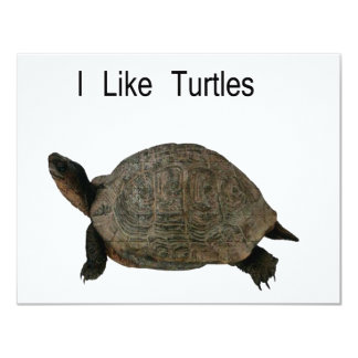 i like Turtles 11 Cm X 14 Cm Invitation Card
