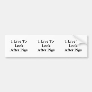 I Live To Look After Pigs Bumper Sticker