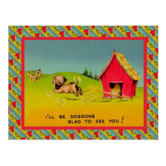 I ll be Doggone lonesome glad to see you Postcard