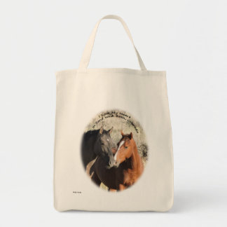I Lost my Heart In Sand Wash Basin, Colorado Tote Bag