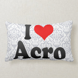 I love Acro Lumbar Pillow