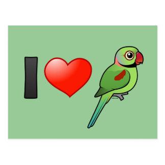 I Love Alexandrine Parakeets Postcards