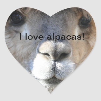I love alpacas! heart sticker