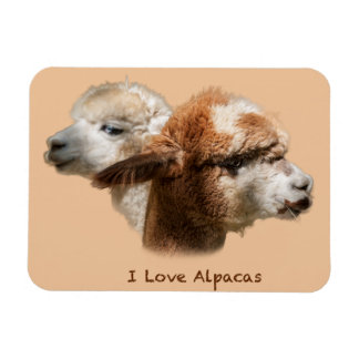 I Love Alpacas Magnets