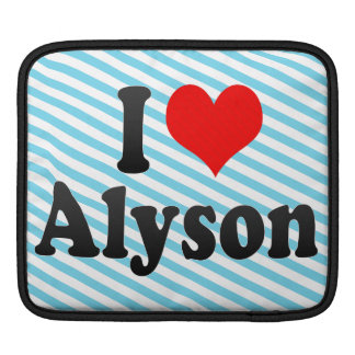 I love Alyson iPad Sleeves