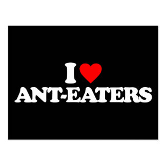 I LOVE ANT-EATERS POSTCARD