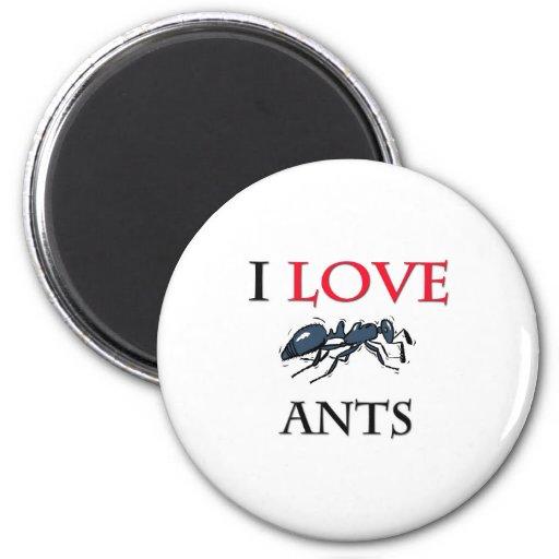 I Love Ants Magnets