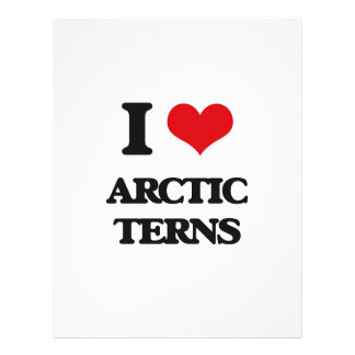 I love Arctic Terns Full Color Flyer