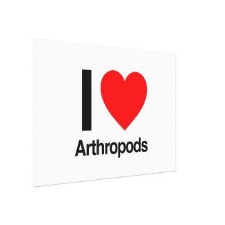 i love arthropods stretched canvas print