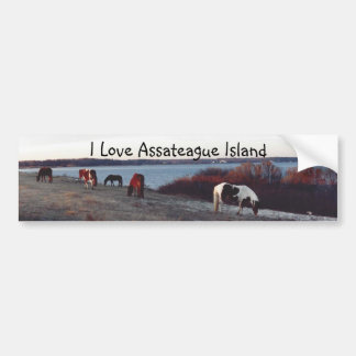 I Love Assateague Island - Bumper sticker