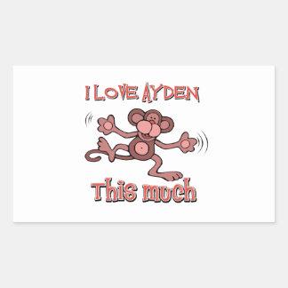 I love AYDEN this much Rectangular Sticker