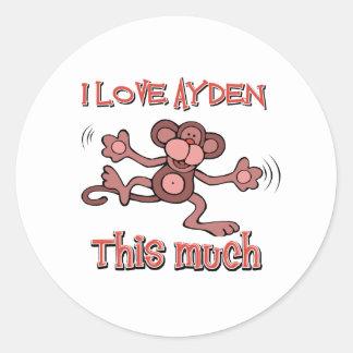 I love AYDEN this much Round Sticker