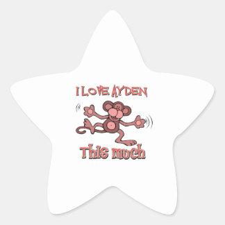 I love AYDEN this much Star Sticker