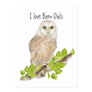 I love Barn Owls - Bird Post Card