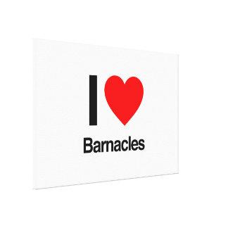 i love barnacles canvas print