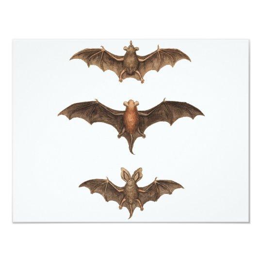 I love bats card