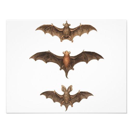 I love bats custom invite