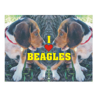 I Love Beagles Beagle Puppies Postcard